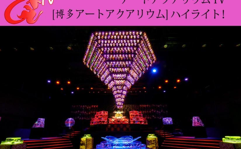 アートアクアリウムTV ~博多・金魚の祭~「開催見どころ特集」配信!