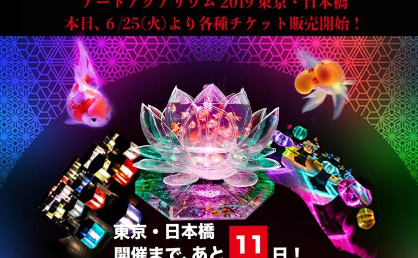 東京・日本橋『アートアクアリウム 2019』開催まで、あと11日!さまざまな楽しみ方ができる各種入場券が本日発売!