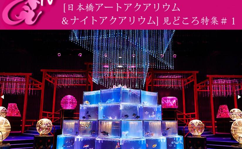 アートアクアリウムTV ~江戸・金魚の涼~「東京・日本橋開催 見どころ特集 #1」配信!
