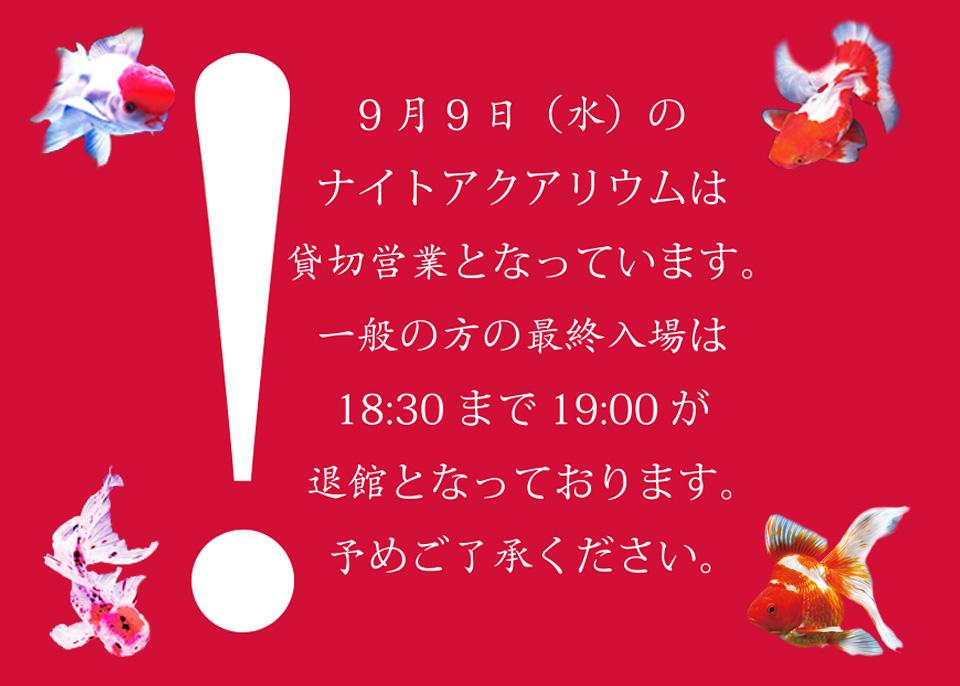news_0908