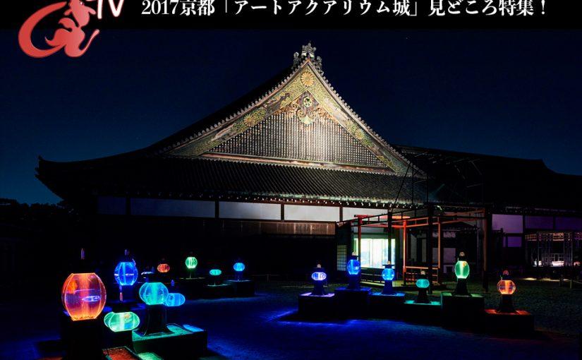 アートアクアリウムTV 〜京都・金魚の舞〜「開催見どころ特集」配信! 史上最大規模にパワーアップした本展覧会の見どころをお届けいたします!