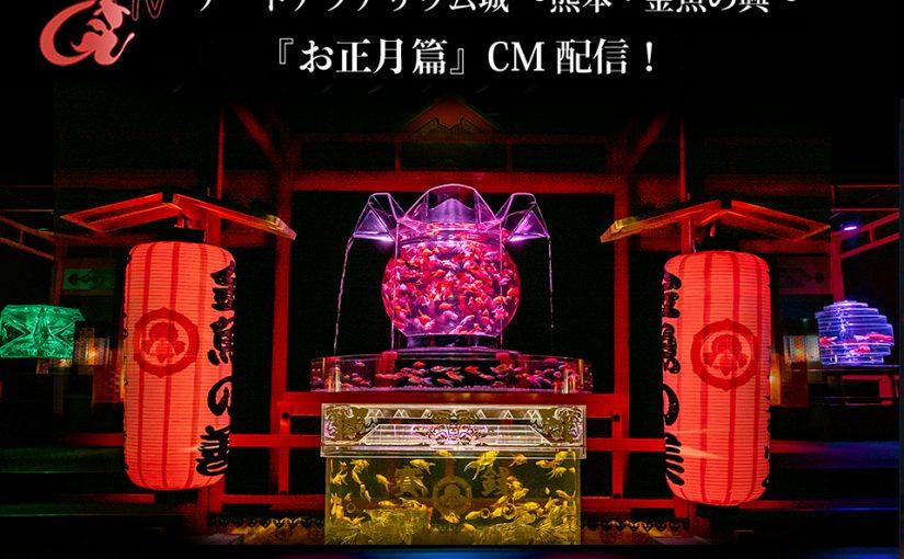 アートアクアリウムTV「熊本開催 お正月篇」配信!アートアクアリウム初詣 開催!